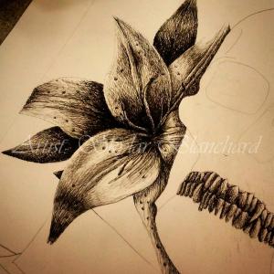 in-bloom-skylar-blanchard
