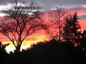 sunrise-skylar-blanchard
